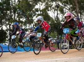 Ashmore BMX Club